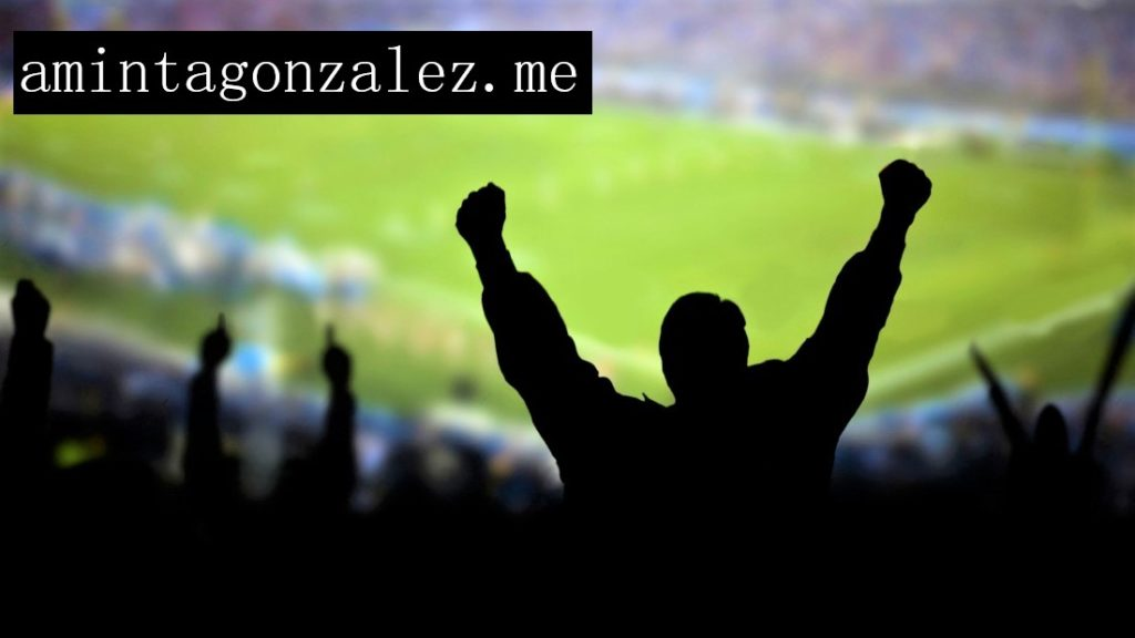 soccer_fans-wallpaper-2400x1350-1100x619